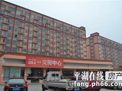 九龙广场漂亮公寓全套面南