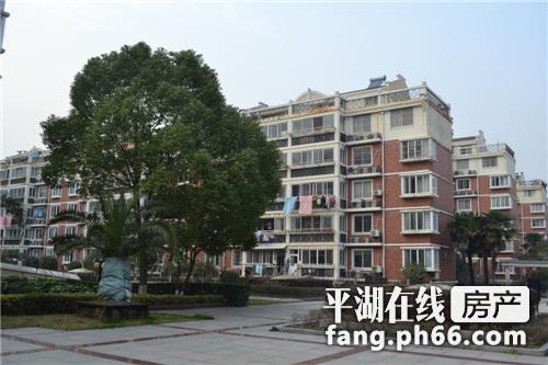 市区最繁华地段,交通便利,停车方便,是个理想租住房子。