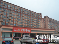 九龙广场单身公寓政710906
