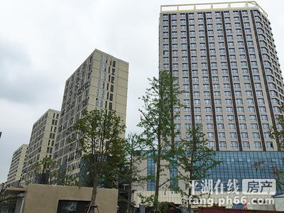 平湖瑞丰广场单身公寓 单层