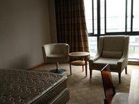 新天地酒店公寓不含物业费政府网78211