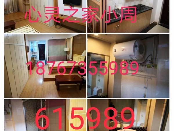 尚锦花园 电梯房公寓全套 面南