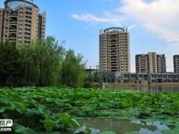 降价急售耀江 海德城3室2厅2卫128平米185.8万住宅